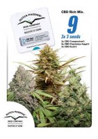 CBD Feminized Mix