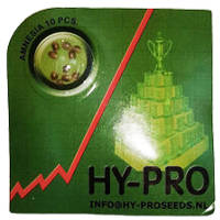 order amnesia hypro seeds online at cannapot