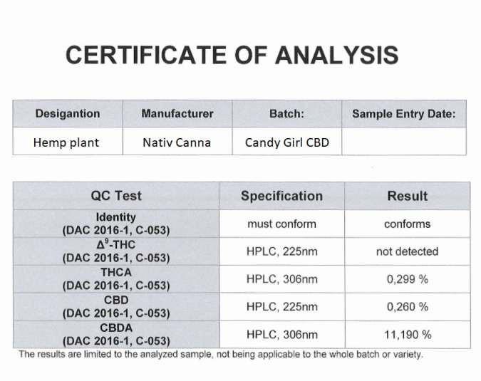 high-cbd-strain-nativcanna-14percent-cannabidiol