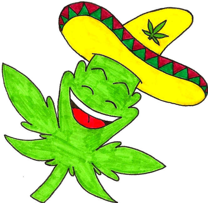 Lowryder seeds – automatic marijuana – autostrains - ruderalis