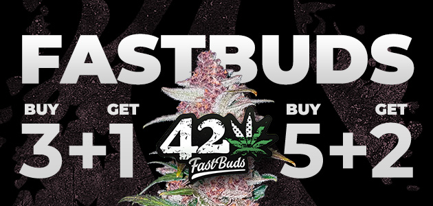 free automatic cannabisseeds at Cannapot - FastBud Promotion